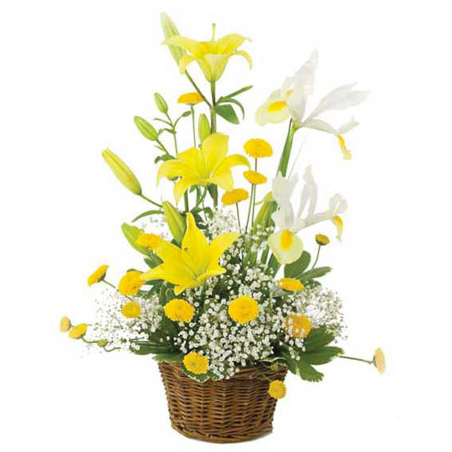 arrangement floral - FCF-116